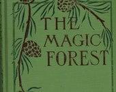 The Magic Forest by Stewart White Vintage 1903 Children's Book