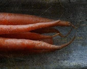 8x12 Eat Your Carrots