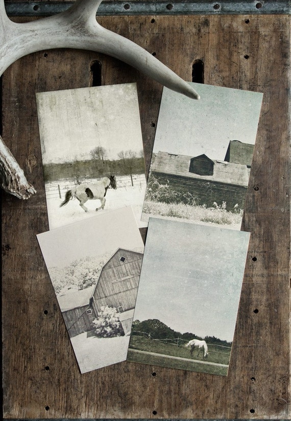 Farm Life Postcard Set