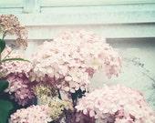 Spring .pastel shabby chic decor. nursery decor. pink flower photography . romantic . botanical print . wall art . Softly Summer