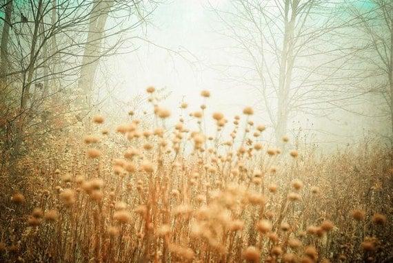 landscape .dreamy photography . home decor . rustic decor . woodland art . tan blue gray mint green . 11x14 . I Dreamt of a Foggy Morning