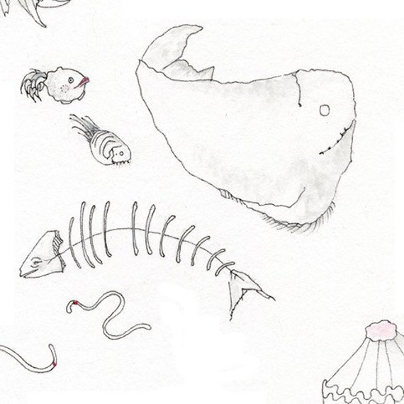 Fish Drawing Deep Sea Creatures Original as well Royalty Free Stock Photos Hand Drawn D Alphabet Lettering Image37030458 besides 486105013 besides Pen Drawing Letter C Stock Image 1656257 moreover Productsd. on paper sketches