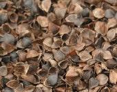 1 lb Buckwheat Hulls