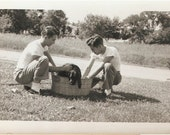 Great VINTAGE DOG PHOTO - Two 1950's James Dean Fellas giving their Black Lab Dog a bath outside in the wash tub - great retro shot