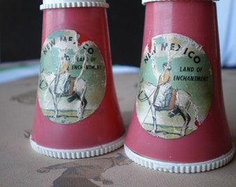 Vintage Kitch New Mexico Salt and Pepper Shakers