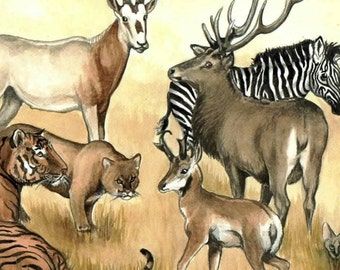 ACEO a menagerie of WILD BEASTS tiger ibex elk zebra cougar cheetah