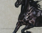 Friesian Balck Horse Print of painting by Cindy Price. Large Signed and numbered Giclee