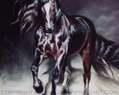 Friesian Stallion Black Horse Print of original pastel painting drawing equine art