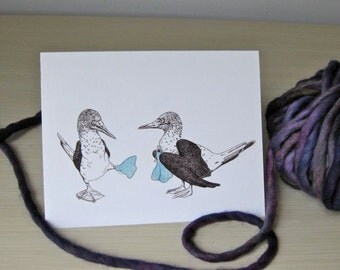 Blue-Footed Booby Card