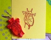 READY TO SHIP anatomical heart hand carved rubber stamp