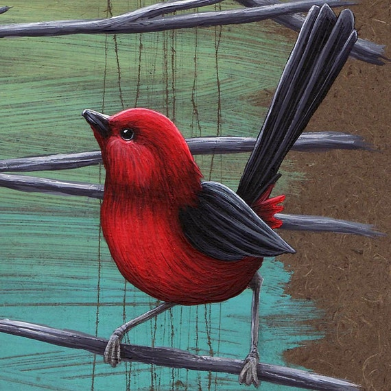 Curiosity No.3 - Litte Red Birds - Giclee Print