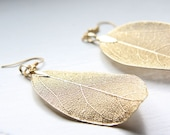 Matte Gold Plated Real Leaf Earring