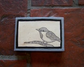 Chickadee original illustration ink pen on coffee-stained canvas