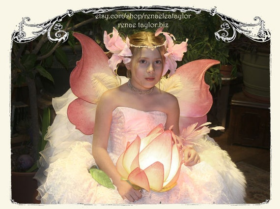 Medium Pink Yellow Wings by Renae Taylor