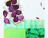 Mediterranean Figs : Limited Edition Print