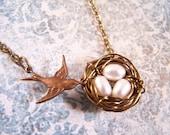 Carry My Love Bird Nest Necklace Three Egg Custom Color