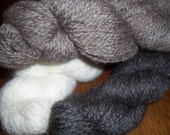 Twisted Fiber CSA      12 Skeins  Shetland Romney  Yarn CSA     Yarn Raw Wool or Roving  Community Supported Agriculture 2013 Shearing