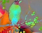 Fine Art Print, Altered Photograph, Home Decor, Modern Art, Bird, Tree. CouCou ChiCou...an 8x8 Giclee print