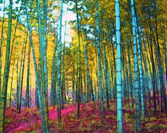 Landscape, Giclee Print, Photograph,  Photomontage, Collage, Woodland, Trees, Birches,  Colour Landscape,The Fauvist's Forest