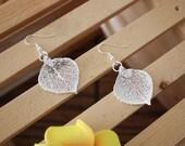 Real Leaf Earrings Aspen Sterling Silver Earrings 4