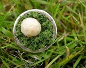 Golf Ball in Moss Ring Under Par