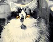 Cat Art print persian kitten grey