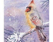 Original Watercolor Cardinal Female Bird Winter Snow Landscape Blizzerd Holiday Season Gift Bird Lover Snow Storm Winter Colors Childs Room