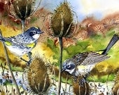 Bird painting - PRINT of a watercolor painting - Yellow-rumped Warbler painting, bird art, animal art - Nature, wild life, 8x10