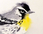 Bird Art / Watercolor PRINT / Animal nature painting / Woodland small bird Yellow Throat Warbler / Wildlife artwork Grey color field 10x10 B