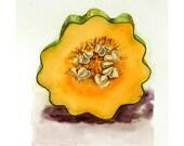 Art Original Watercolor Painting Acorn Squash for Thanksgiving Autumn Food Vegetable Women Men Kitchen Decor Yellow 5.6 x 7.6 Under 55