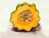 1. Vegetable Kitchen Botanical Art PRINT / Still life watercolor painting / Acorn squash drawing artwork / Wall décor orange color field