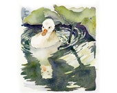 Swan Art Original Watercolor Painting Easter Animal Kids Women Nature Woodland Creature Water Bird Forest Creature 8 x 7 Price Under 60