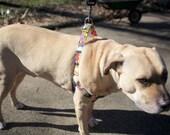 Adjustable Tightening Dog Harness - size Large