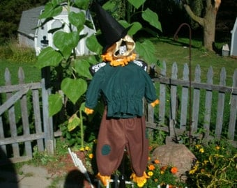 Baby, toddler  Wizard of Oz Scare Crow Costume