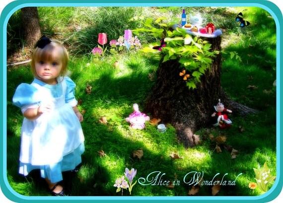 alice in wonderland teapot dress baby