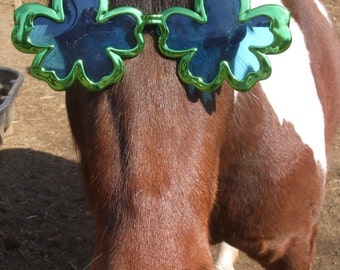 St. Patrick's Day Card Sweet Pea the Chincoteague Pony