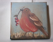 Robin with Berries- FREE SHIPPING