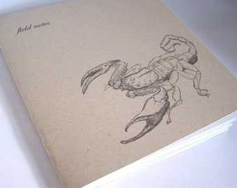 scorpion notebook - field notes for the naturalist - blank book, sketch book