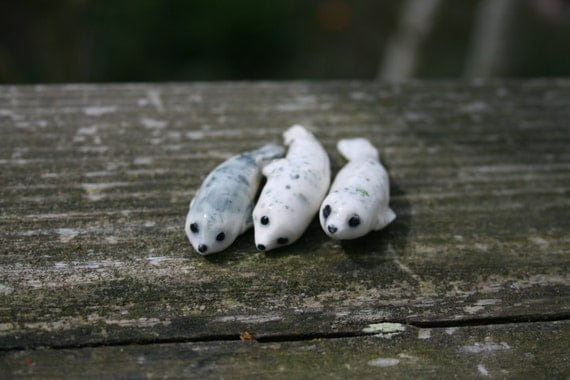 Seal Figurines A Little Colony Of Harbor Seals Porcelain