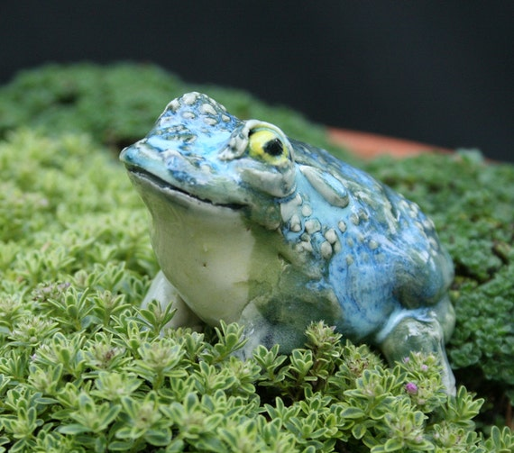 toad figurine - curious toad -  porcelain animal figurine