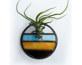 Stained Glass Air Plant Holder - Mod Round 2