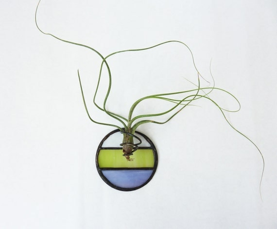 Stained Glass Air Plant Holder - Mod Round 3