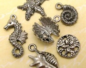 Seashell Charm Set Antique Pewter Silver 6 Pc. AP40