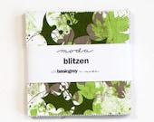 Blitzen 5 inch charm pack Moda Fabric- basicgrey