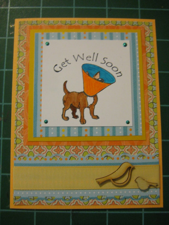 Get Well Cards for Pets, Humans, or Anyone set of 5 cards with envelopes.