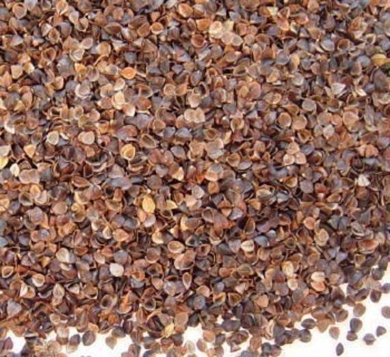 Buckwheat Hulls - 1/2 Pound