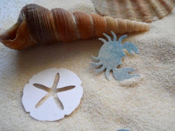 Sand Dollars, Sea Stars and Blue Crabs