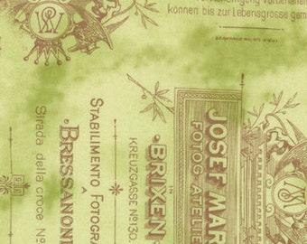 Curio Antique Words Green Fabric 1 Yard