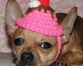 Custom Lickety Split Doggie Sundae Hat