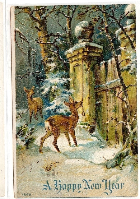 Vintage Reindeer Christmas Postcard Christmas Eve Winter